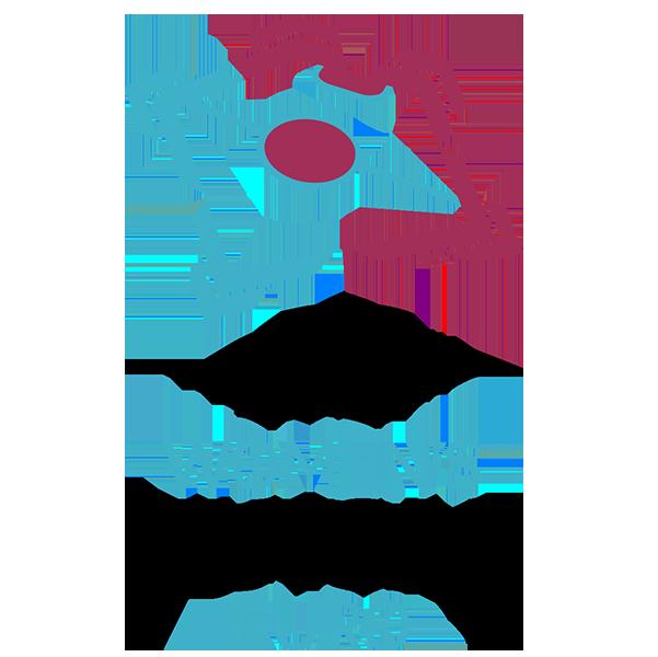 UEFA women's futsal euro